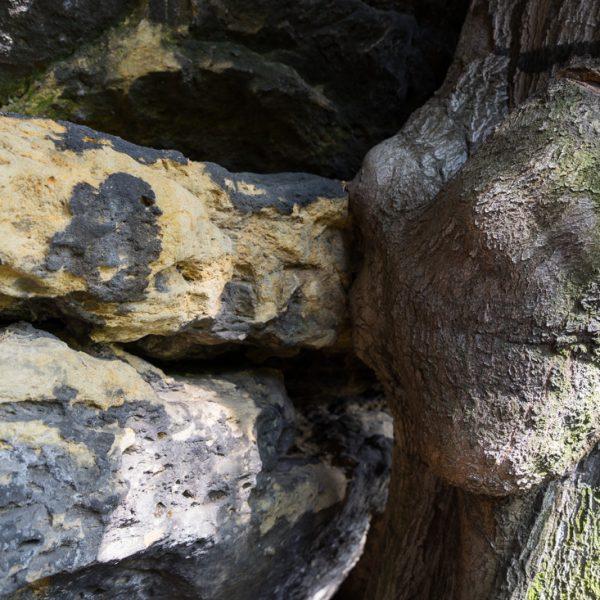 Holz trifft Stein, am Oberen Terrassenweg