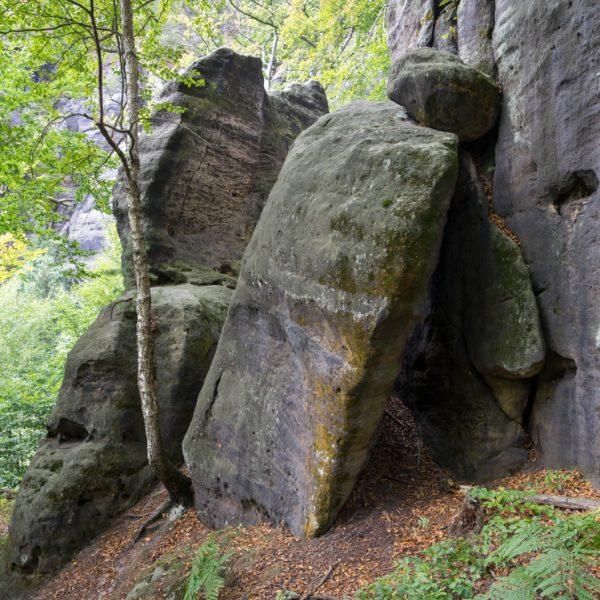 Felsen auf dem Weg zur Starken Stiege, Affensteine
