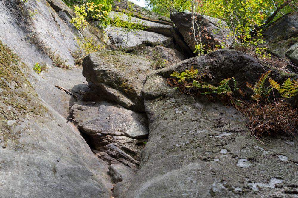 Starke Stiege (unterer Bereich), Affensteine