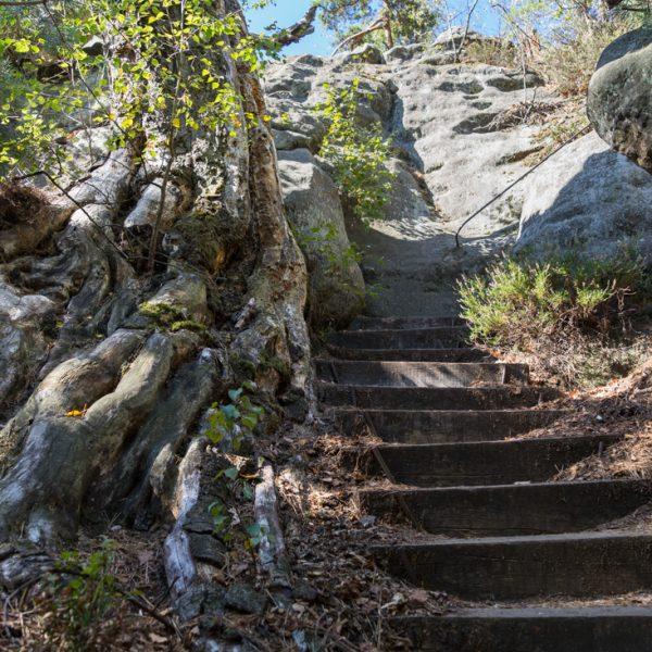 Abstieg Lehnsteig, Wanderung Affensteine