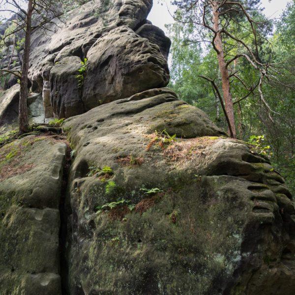 Felsformation und Kletterfelsen am Riegelhof