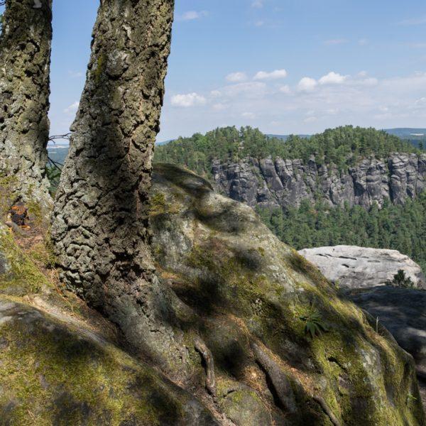 Aussicht vom Kleinen Bärenstein zum Felsmassiv Großer Bärenstein