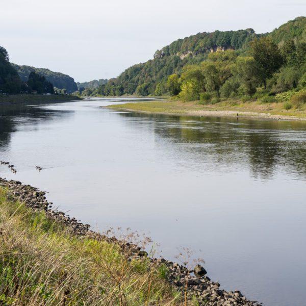 am Elberadweg mit Blick auf den Flusslauf der Elbe