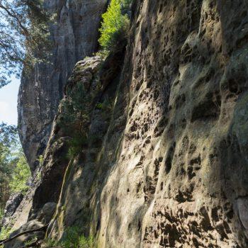 Felswand am Gamrig, an den Kletterzustiegen