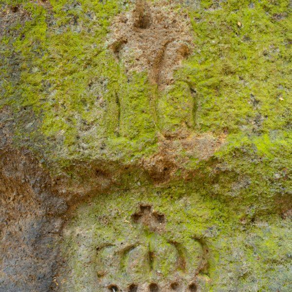eingeritzte Krone im Sandstein, Wandern im Bielatal