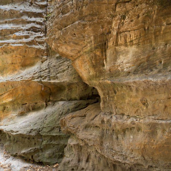strukturierte Felswände im Bielatal