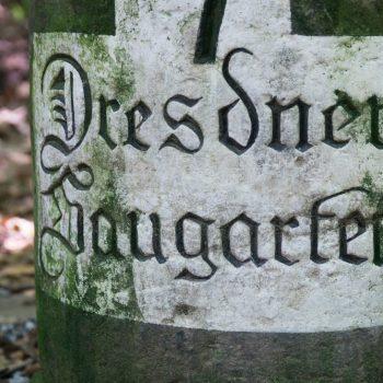 Der Dresdner Saugarten, das Zentrum der Dresdner Heide