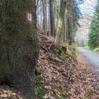 Wanderweg Kannenhenkel, Dresdner Heide