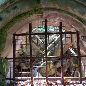 Fenster der Ruine am Wolfshügel, Dresdner Heide
