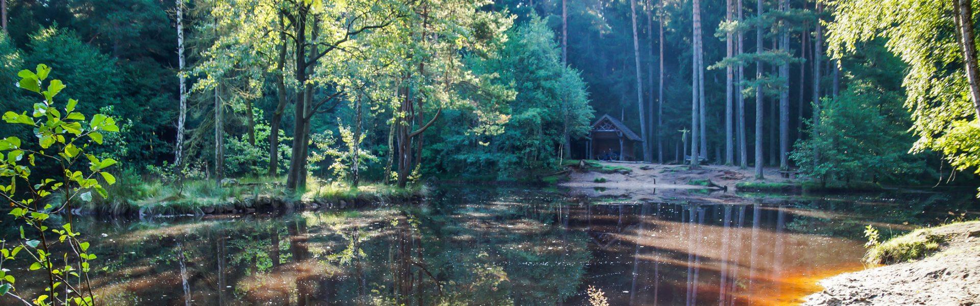 Dresdner Heide Stausee Wandern und Entspannen