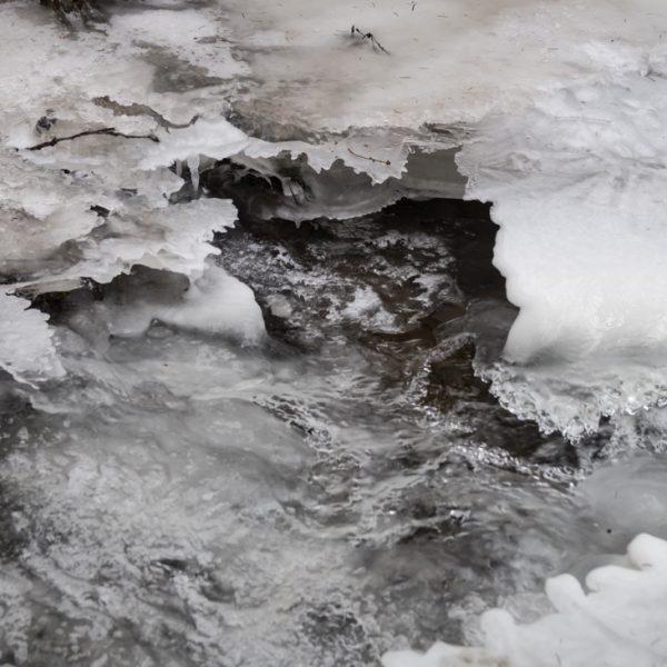 Struktur aus Eis auf der Prießnitz, Dresdner Heide
