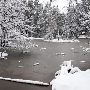 Winterstimmung am Stausee, Dresdner Heide
