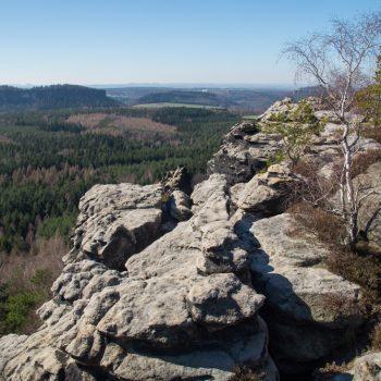 Ausblick vom Gohrisch auf den Pfaffenstein