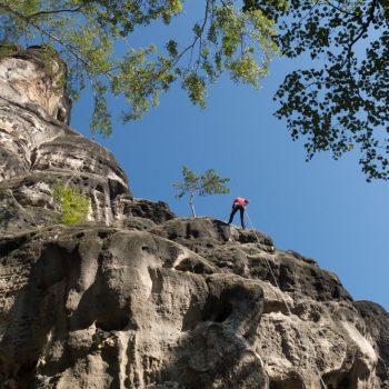 Abseilen am Falkenstein, Klettern in der Sächsischen Schweiz