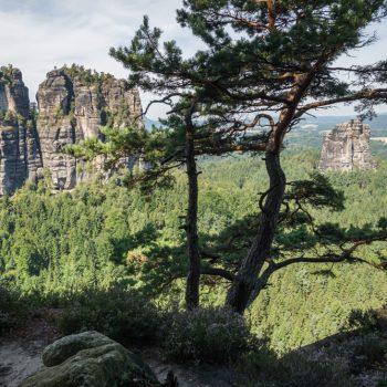 Ausblick vom Müllerstein zum Falkenstein und zum Hohen Torstein, Schrammsteine