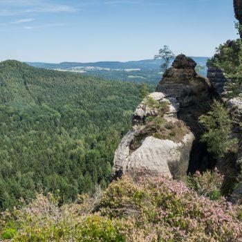 Ausblick von den Schrammsteinen zur bewaldeten Hohen Liebe