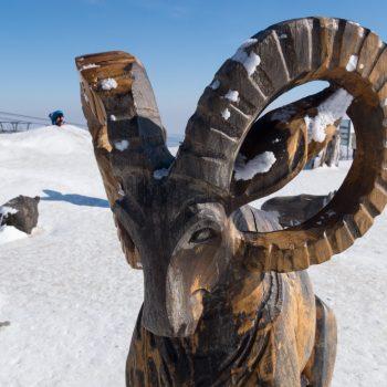 Figuren aus Holz auf dem Fichtelberg, Erzgebirge