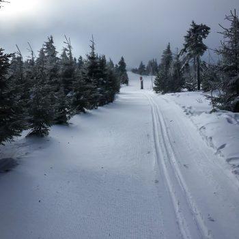 Langlauf-Loipe am Fichtelberg, bewölkter Himmel am Vormittag