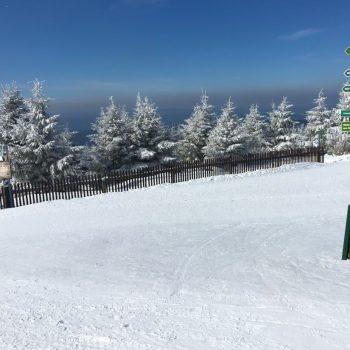 Wegweiser und verschneite Landschaft am Fichtelberg
