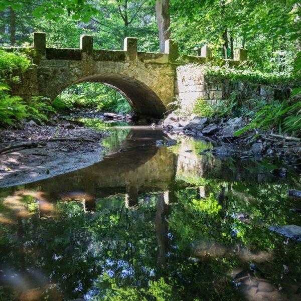 Schwedenbrücke im Prießnitztal, Dresdner Heide