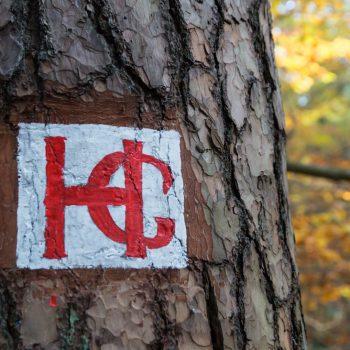 HG-Weg, historisches Waldzeichen Dresdner Heide
