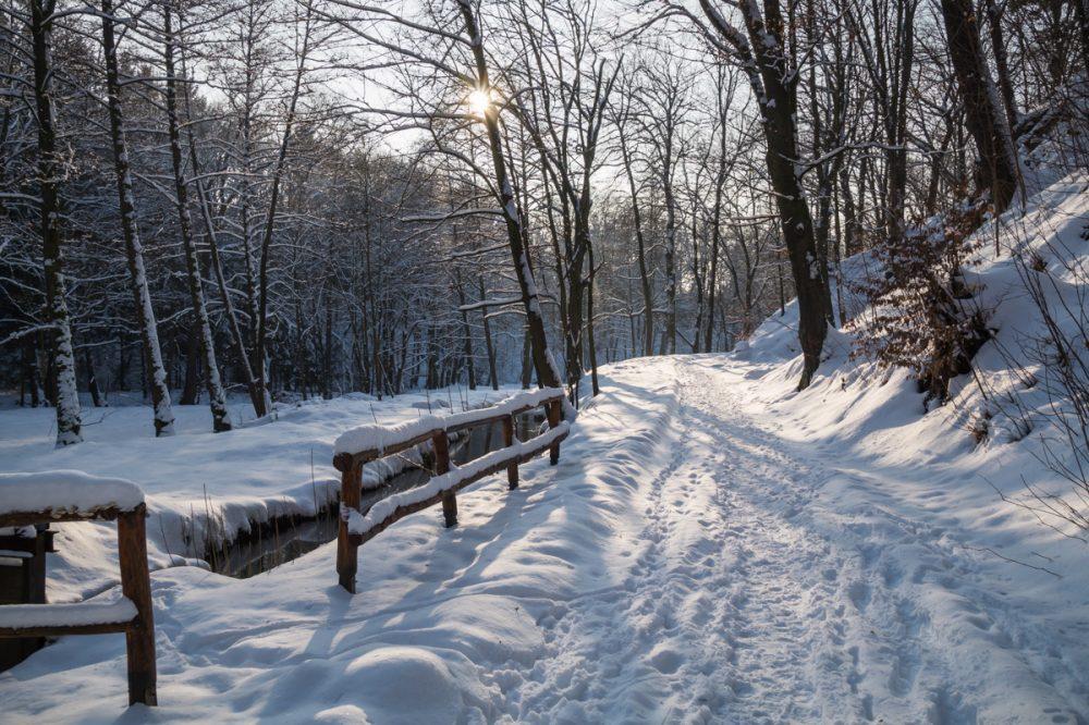 Im Hüttertal, Wanderweg an der Großen Röder