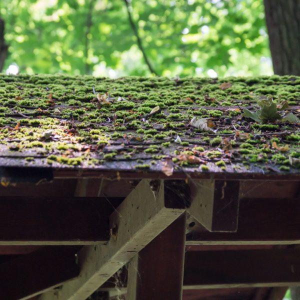 bemoostes Dach eines Rastplatzes im Hüttertal