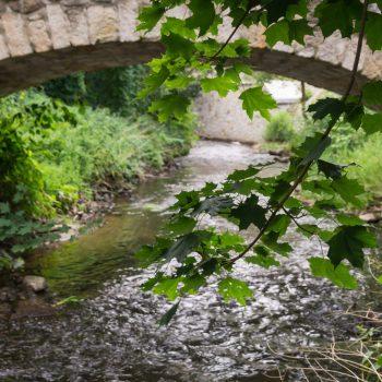 Am Ufer der Großen Röder, Hüttertal bei Radeberg