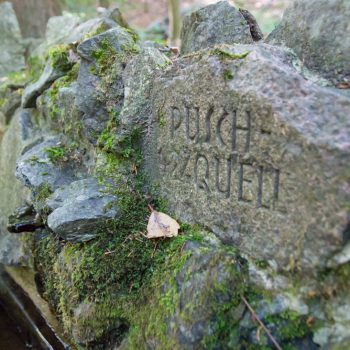 Puschquelle am Prießnitz-Wasserfall