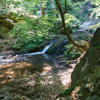 Wasserfall an der Prießnitz, Dresdner Heide