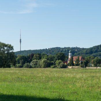 Blick vom Elberadweg auf den Fernsehturm und die Kirche Maria am Wasser