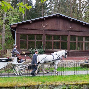 das Hochzeitspaar in der Kutsche, Ankunft zur Hochzeitsfeier