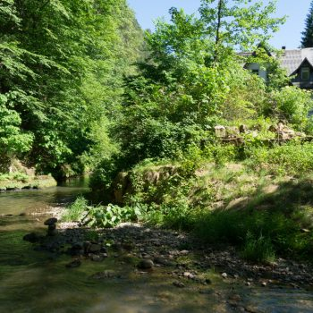 Am Ufer der Polenz, nahe Waltersdorfer Mühle