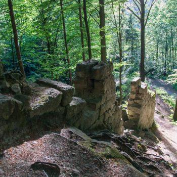 Mauerreste am Bärengarten bei Hohnstein