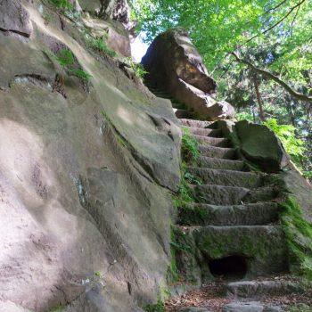 kleine Treppe am Bärengarten führt den Hang hinauf