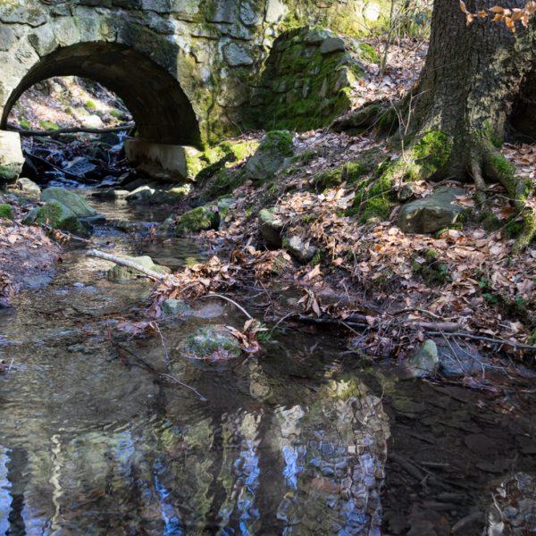 Hohe Brücken bei Pillnitz, historische Brücke und kleiner Bachlauf