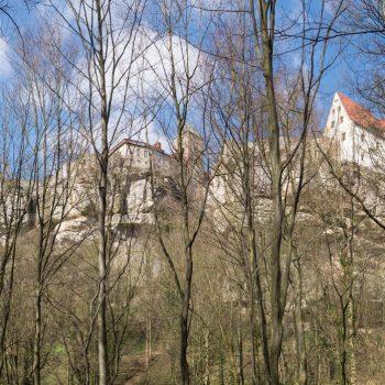 Blick von Bärengarten auf die Burg Hohnstein