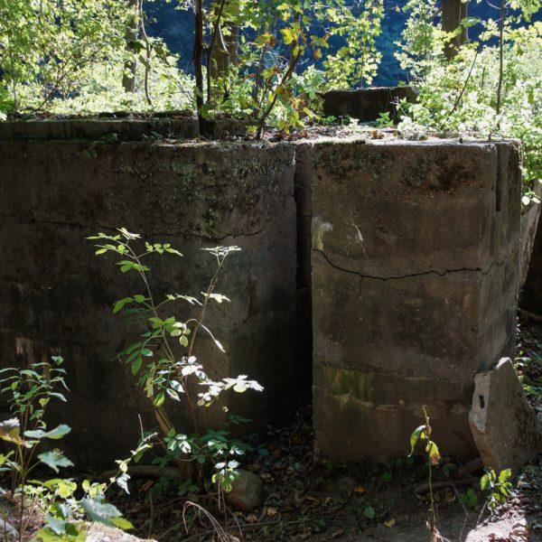 Ruine im Polenztal