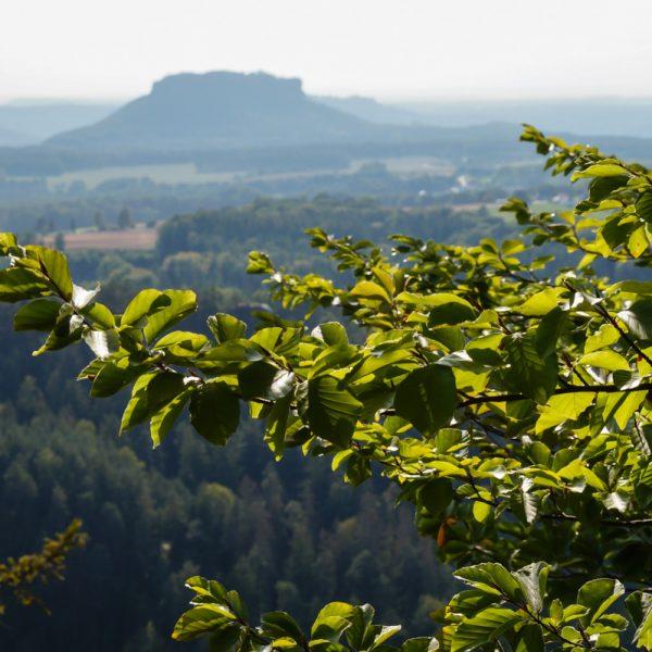 Ausblick vom Brand zum Lilienstein