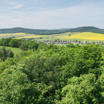 Ausblick vom Lessingturm in Richtung Keulenberg