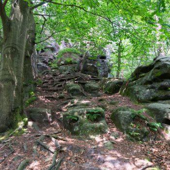 Auftieg zur Kleinen Gans, Kletterzustieg