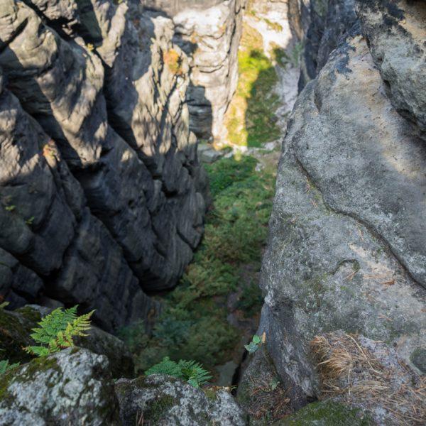 Steile Schlucht an der Ratte, Pfaffenstein