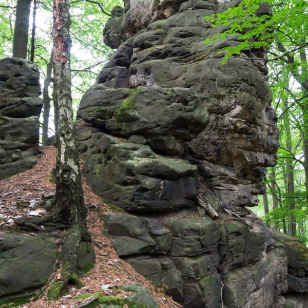 Felsblock auf dem Hausberg, nahe Kuhstall