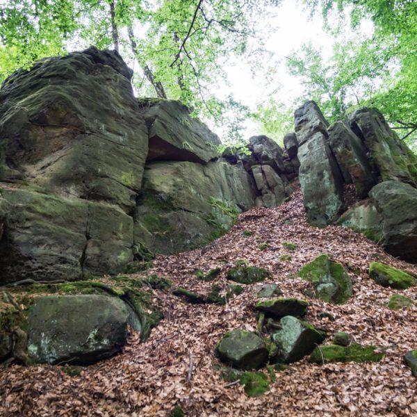 Felsen auf dem Hausberg