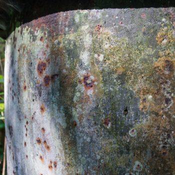 Detailansicht der Ruine, Spuren der Vergänglichkeit: das E-Werk Copitz im Liebethaler Grund