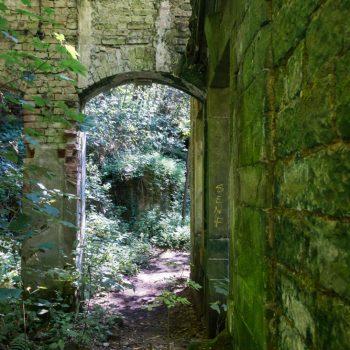 Ruine des Elektrizitäswerkes Copitz im Liebethaler Grund