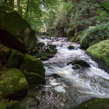 Am Flusslauf der Wesenitz im Liebethaler Grund