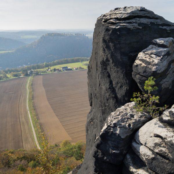 Aussicht vom Lilienstein auf Festung Königstein