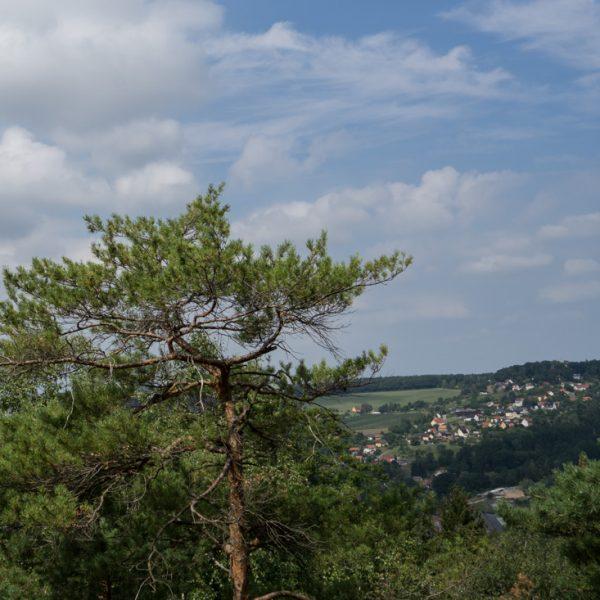 Ausblick vom Breitenstein in Richtung Schöne Höhe