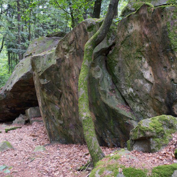 Felsblöcke am Breitenstein